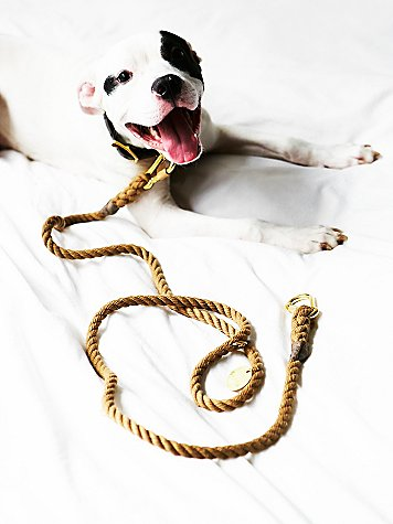 Found Your Animal Natural Rope Leash